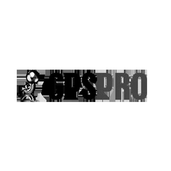 Klienta GPSPRO logo melns