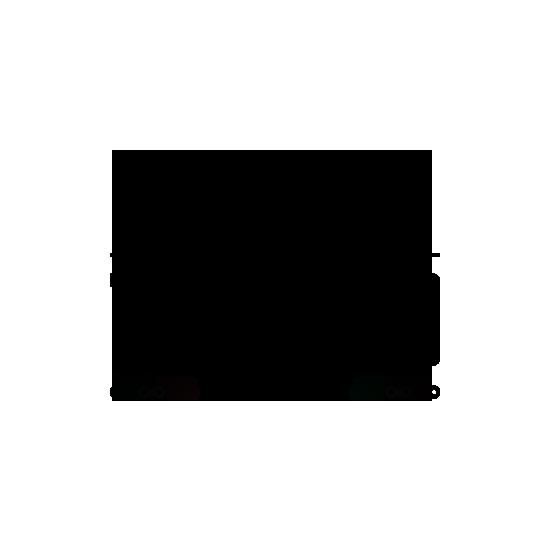 Klienta TOPVELO.LV logo melns